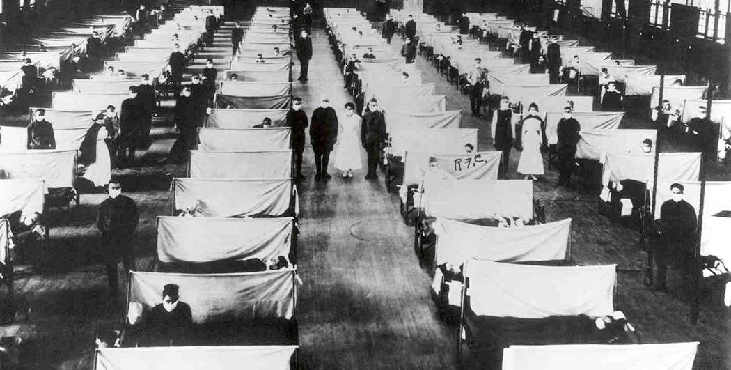 Devastated by Disease - The Influenza Epidemic of 1918. Click the image for info.